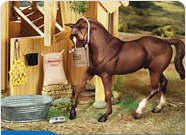 Breyer Special Offers