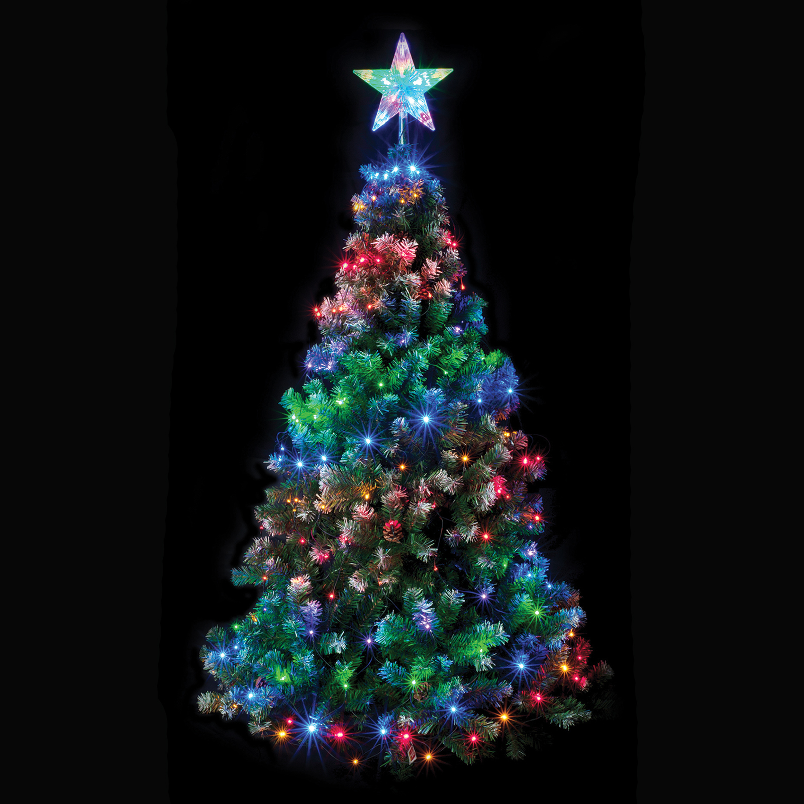 Christmas tree net light with star multi coloured chasing Outdoor christmas tree photos