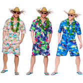 Mens Hawaiian Party Guy Luau Summer Beach Shirt & Shorts Costume