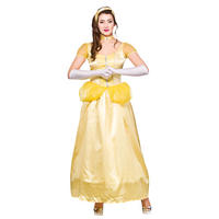 Ladies Beautiful Princess Fancy Dress Halloween Costume