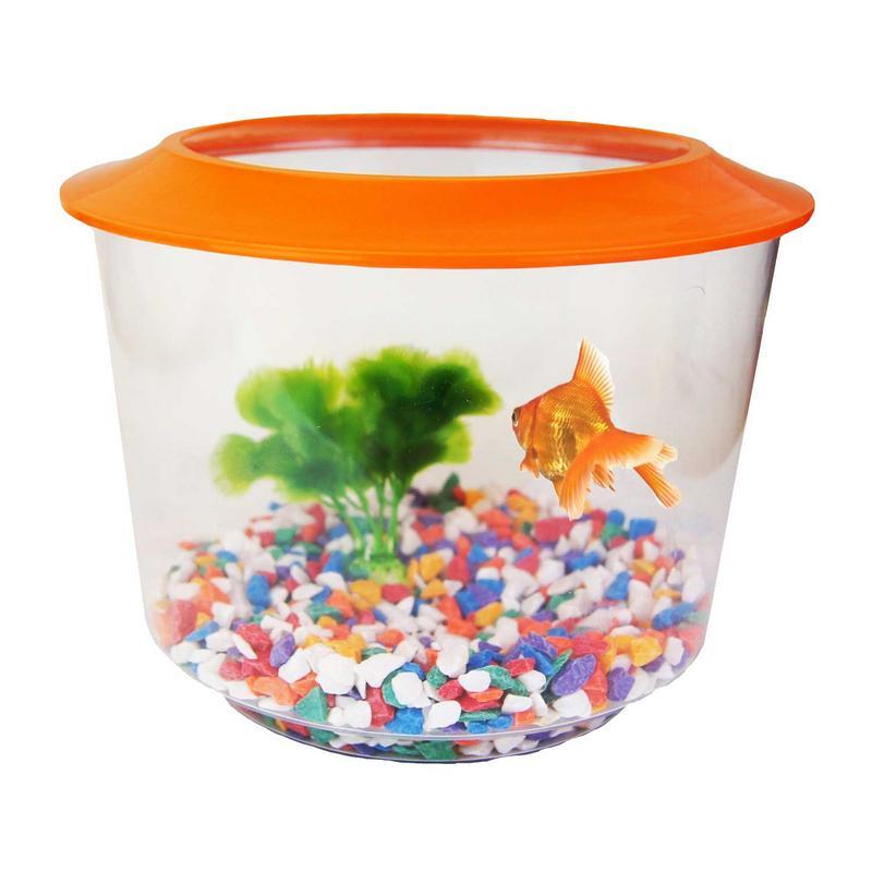 Goldfish starter set aquarium bowl gravel plant included for Small fish bowl