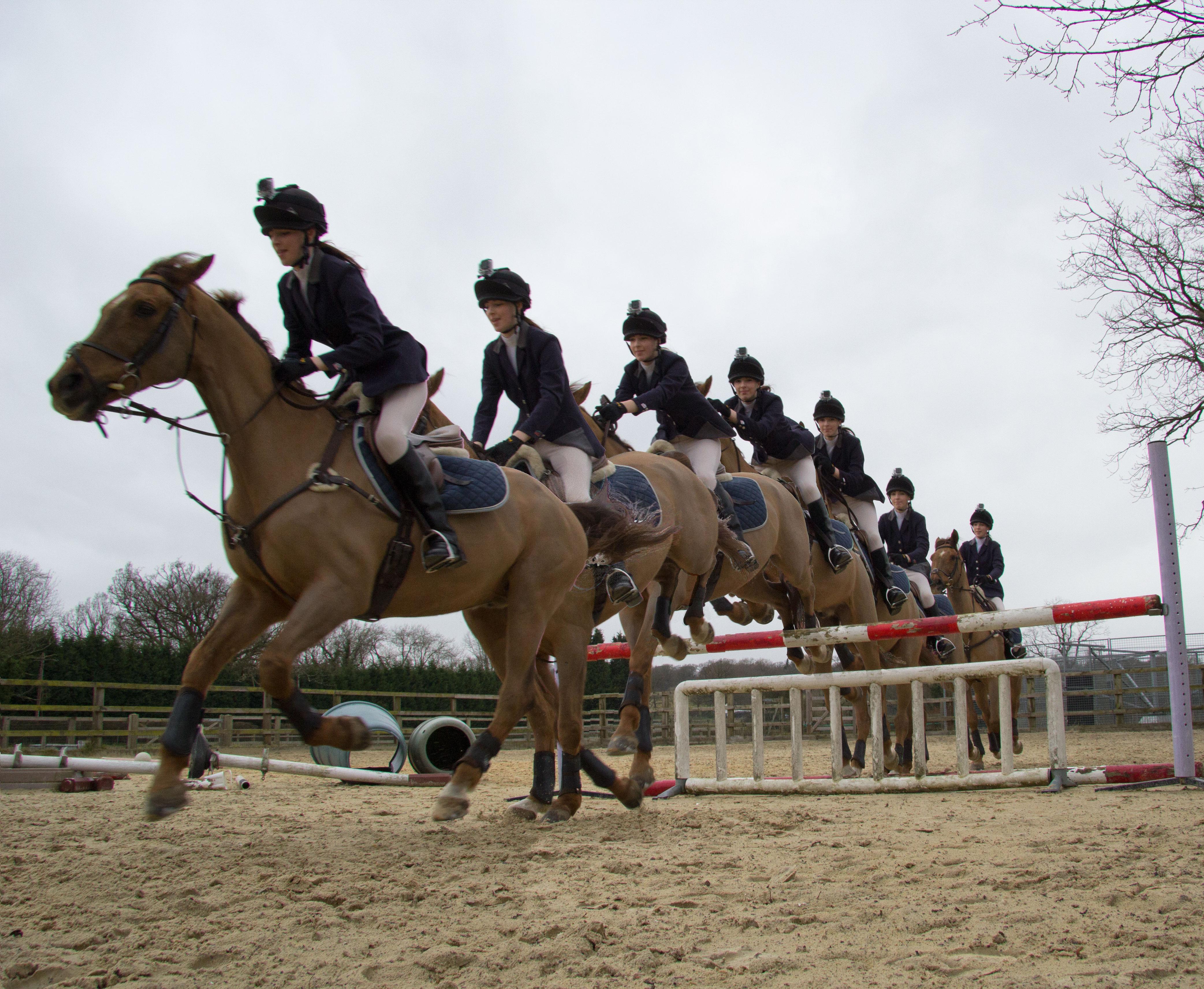 le regime de star et l'equitation