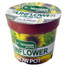 View Item GARDENING GROWPOT. SUNFLOWER, PANSY, DAISY, MORNING GLORY, LAVENDER. GROW POT.