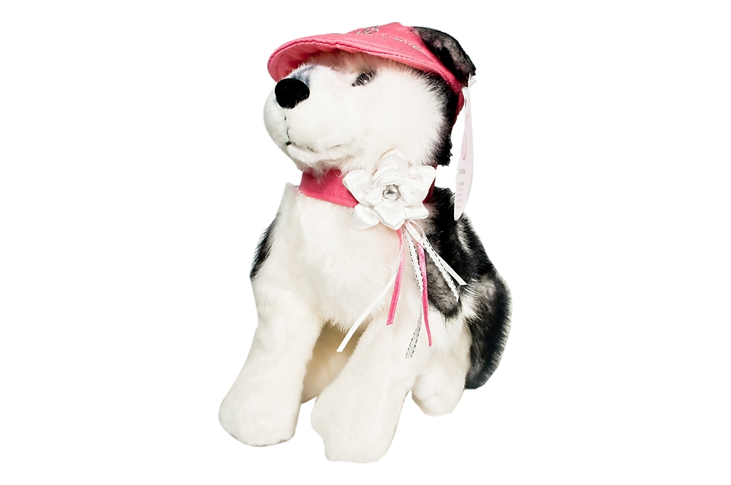Sharapova Husky Toy Enlarged Preview