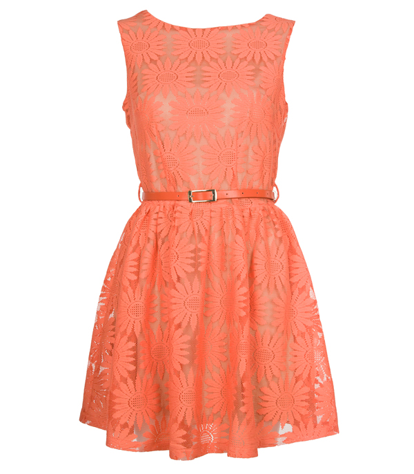 New Womens Orange Daisy Lace Ladies Party Casual Dress Size 8 10 12 14 Enlarged Preview
