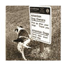 View Item Good Dog By East News Greeting Card