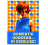 View Item Domestic Goddess in Disguise Fridge Magnet