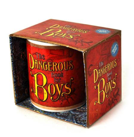 Dangerous Book For Boys Mug