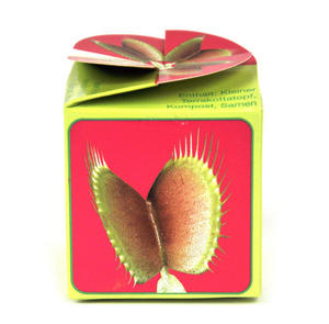 Grow Your Own Venus Fly Trap Thumbnail 2