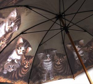 Kittens Walker Umbrella