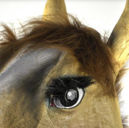 Lady Horse - Lifesize Head Mask
