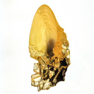 Harry Potter Replica Dumbledore Crystal Goblet Thumbnail 3