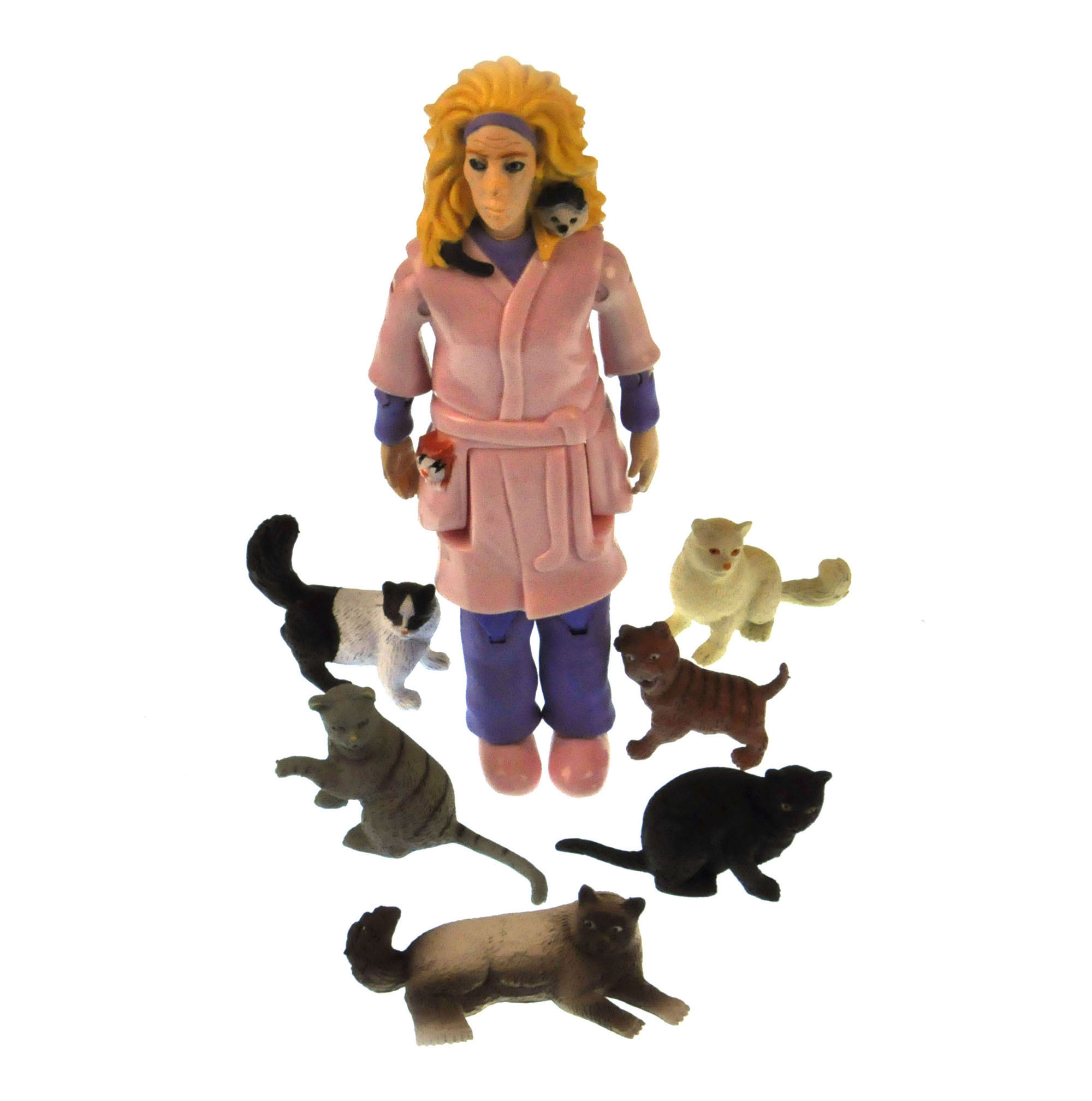 Crazy Cat Lady and Her 6 Cats Action Figure | Pink Cat Shop