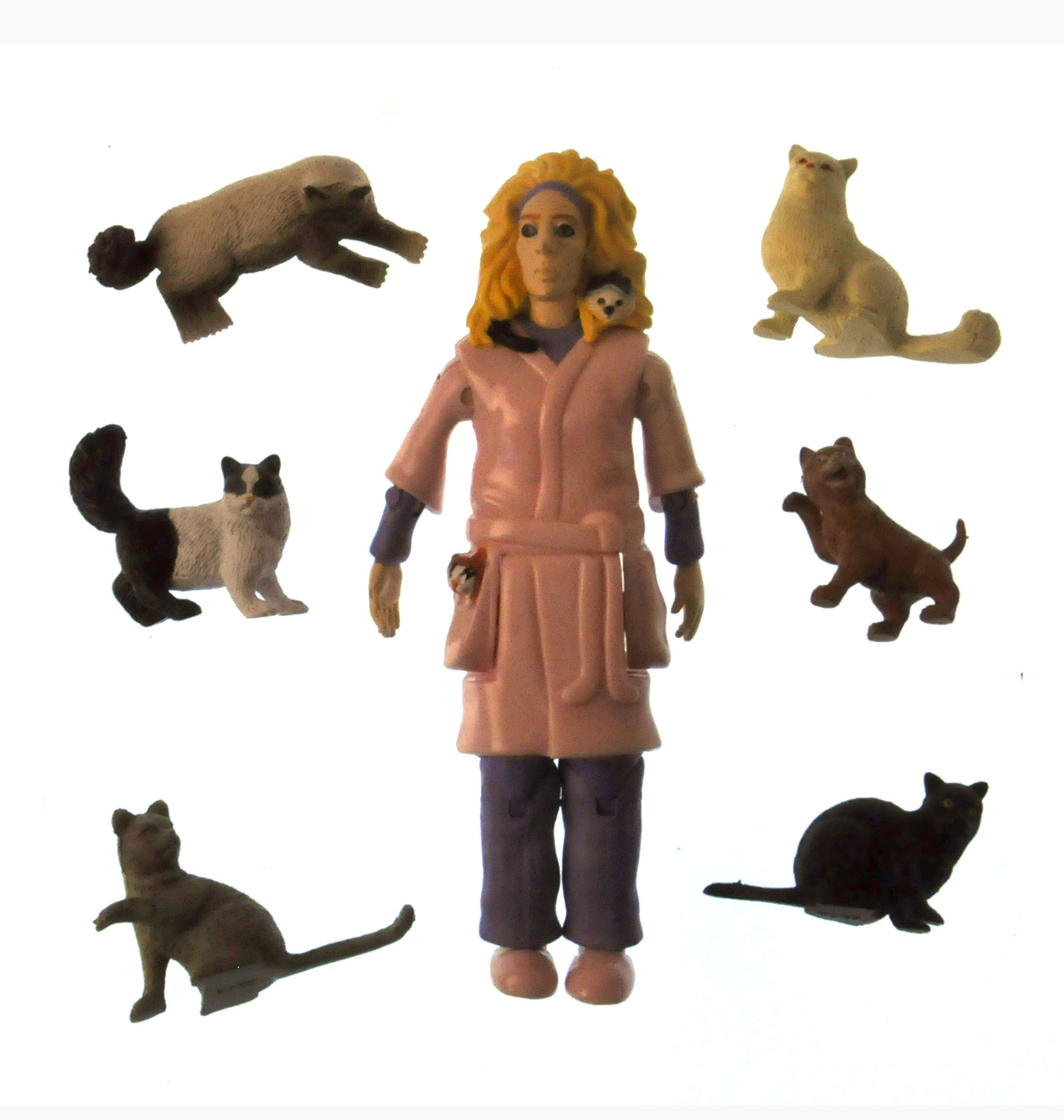 Crazy Cat Lady and Her 6 Cats Action Figure 739048124705 ...