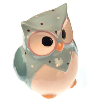 Hand-Painted Owl Money Box