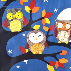 Night Owls  - Woven Shopper Bag By Santoro Thumbnail 3