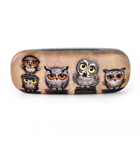 Book Owls Glasses Case by Gorjuss