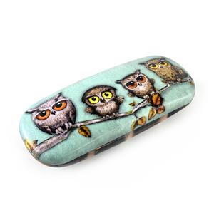 Book Owls Glasses Case by Gorjuss Thumbnail 4