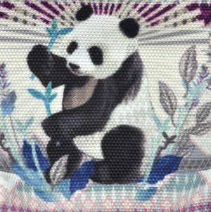 Panda Curiosités Sauvages Coin Purse Thumbnail 2