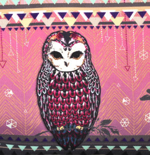 Owl / La Chouette Curiosités Sauvages Make Up Bag / Grande Trousse Thumbnail 2