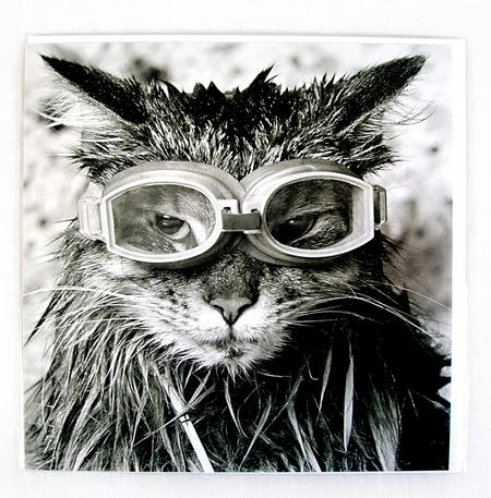 Goggles! By Bart Harris Greeting Card