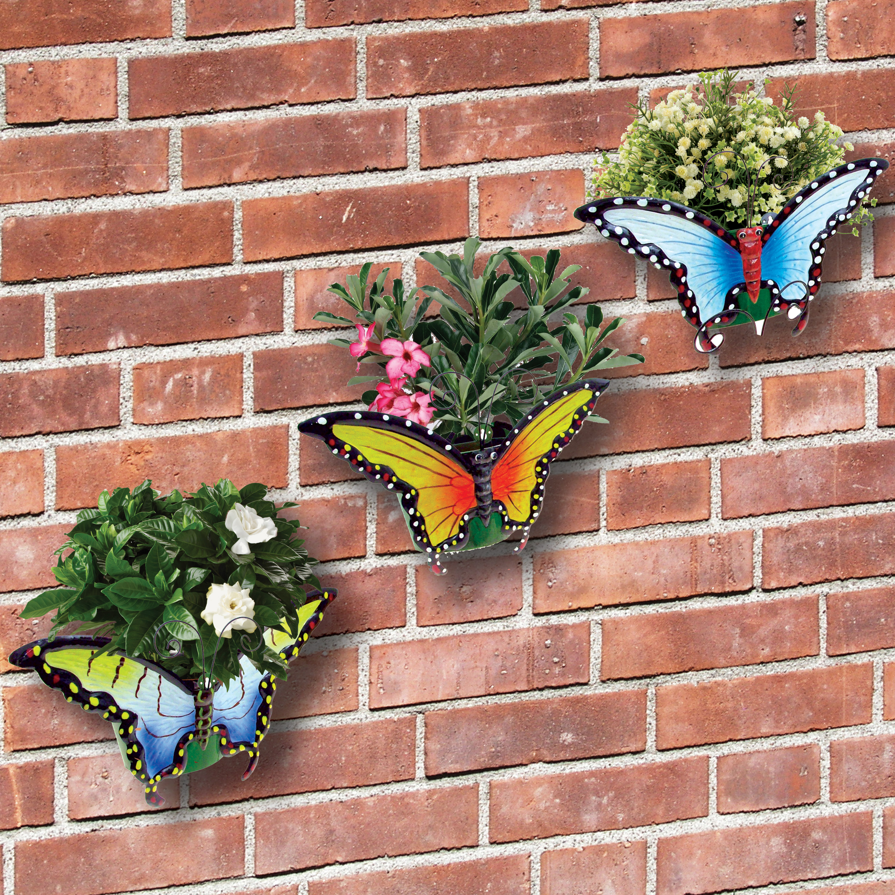 Butterfly wall planters set of 3 garden outdoor brightly for Wall plants outdoor