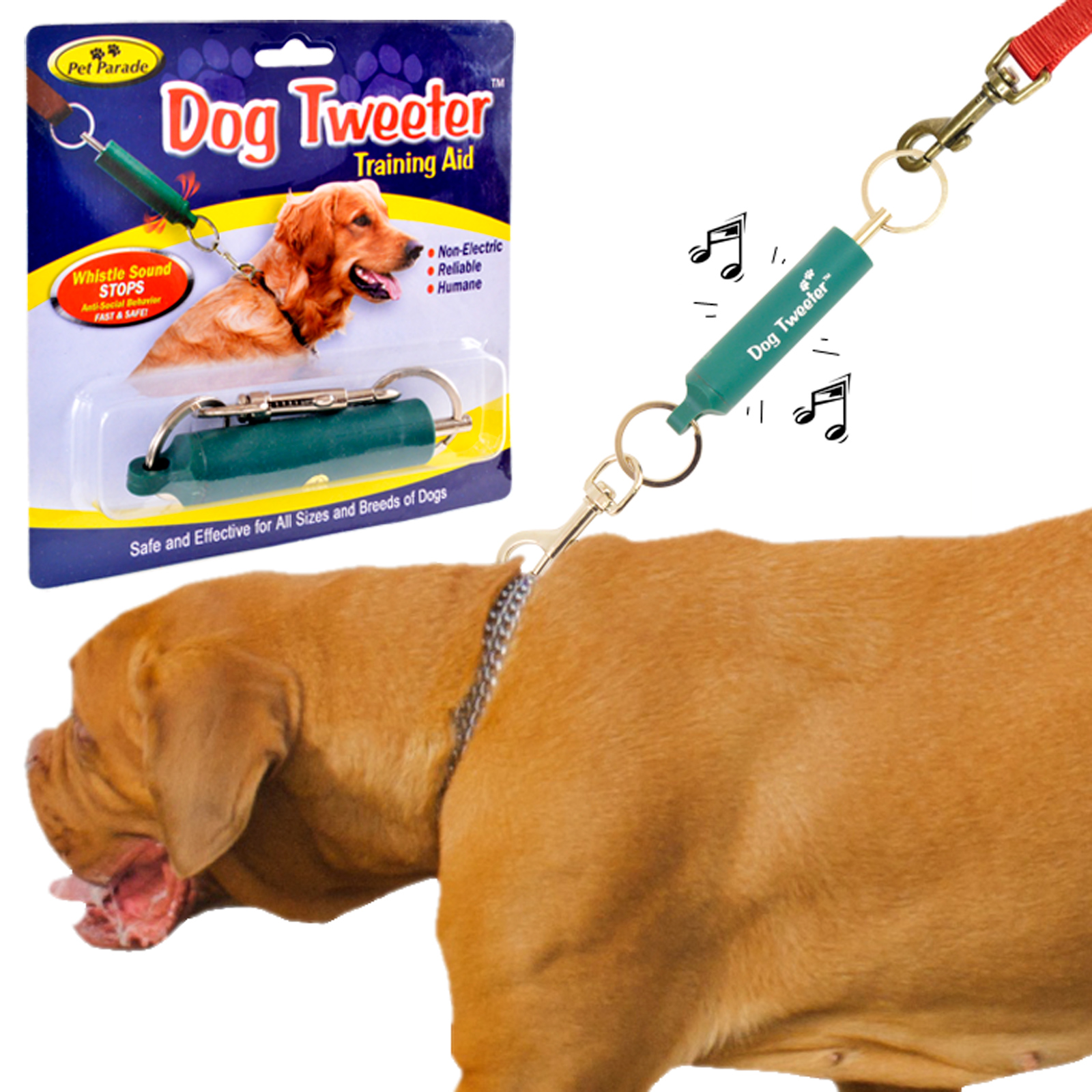 Train Your Dog Not To Pull On The Lead