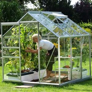 Best Value 6x6 Greenhouse Preview