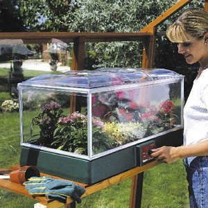 Parasene High Top Adjustable Propagator Preview
