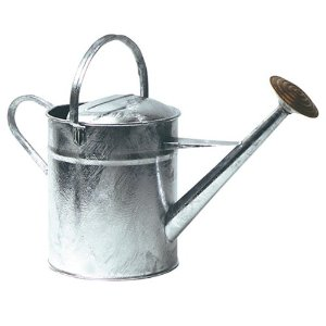 2 GALLON HIGH QUALITY GALVANISED WATERING CAN WITH BRASS ROSE, 9 LITRES Enlarged Preview