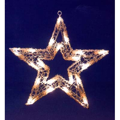 Outdoor 20 LED Lights Star plete With Hanging Ring