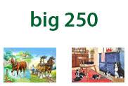 Big 250
