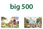 Big 500