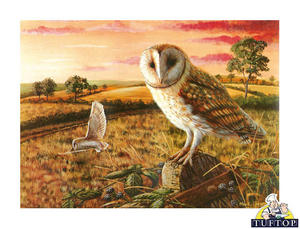 Medium Tuftop Glass Chopping Board in Barn Owl Design Preview