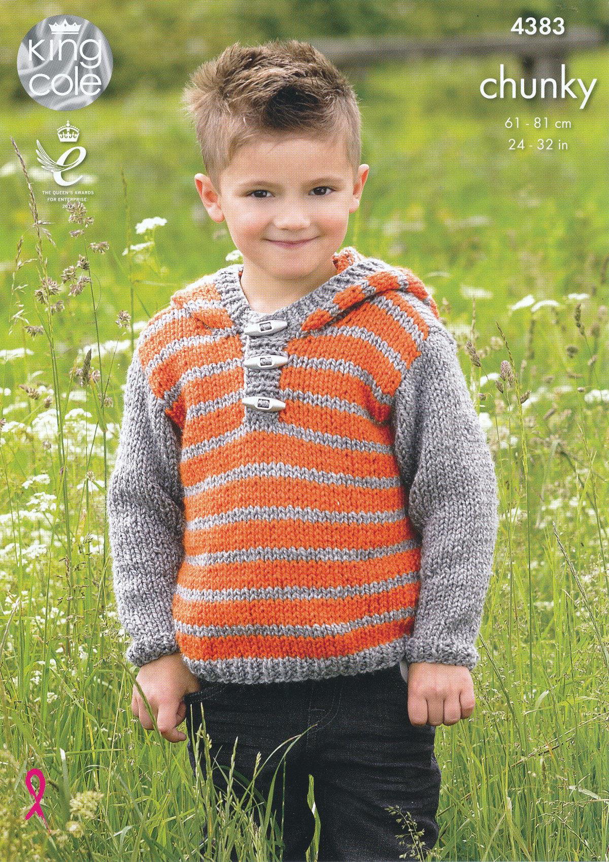 Boys Chunky Knitting Pattern King Cole Kids Striped Hooded Sweater & Gile...