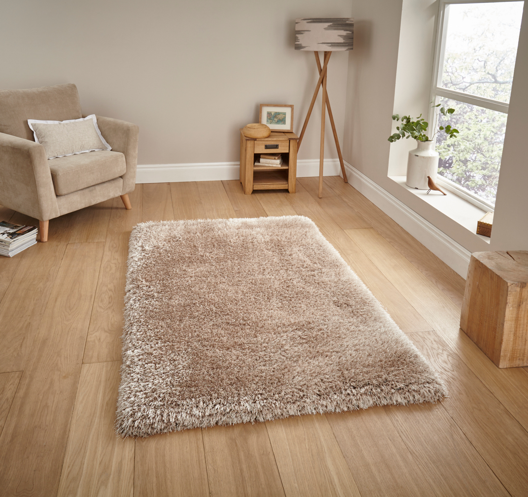 Thick Rug Area Ideas