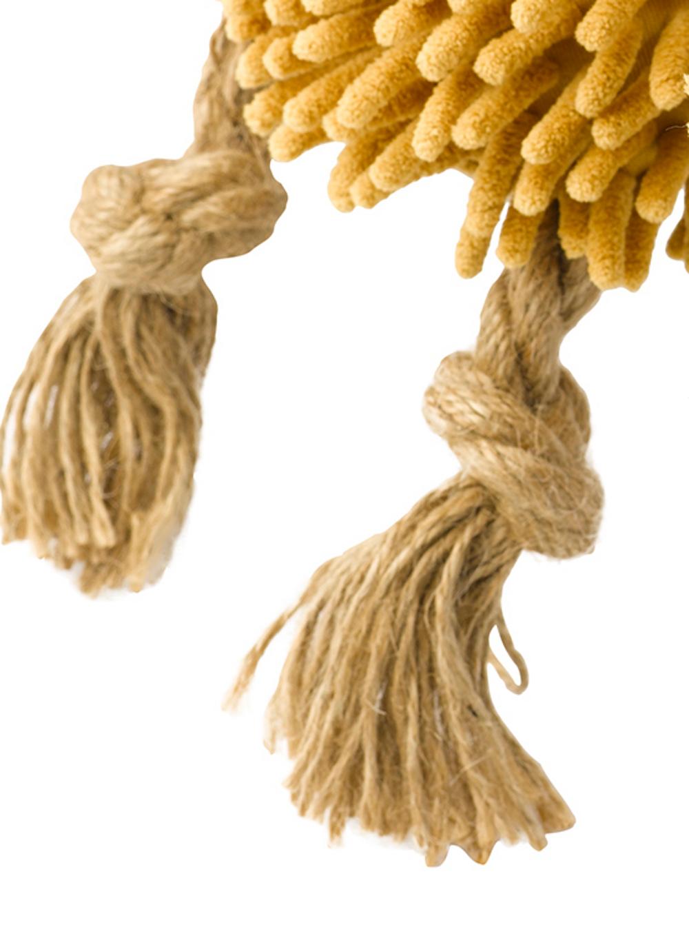 Rope Lion Dog Toy