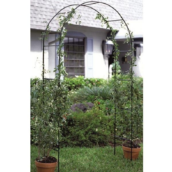 Metal garden arch 2 4m climbing plants flowers ivy rose - Garden arch climbing plants ...