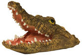 Woodside Floating Crocodile Head With Mouth Open