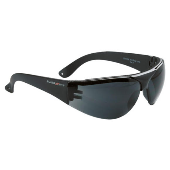 Swiss Eye Outbreak Protector Glasses Black Frame Smoke Lens