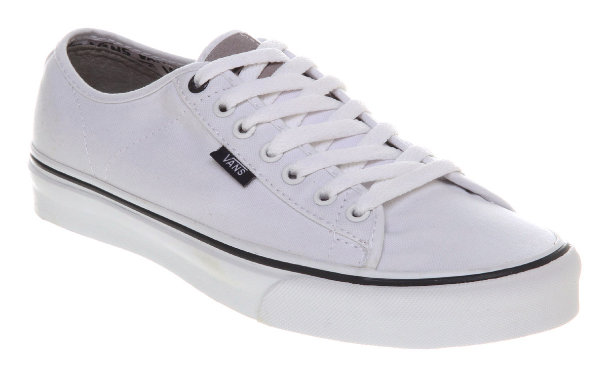 Popular Mens Shoes Vans