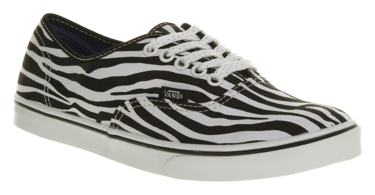 Zebra Print Shoes Mens