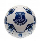 Everton Fc Football Ball Size 5 - 26 Panel - Faux Leather NV