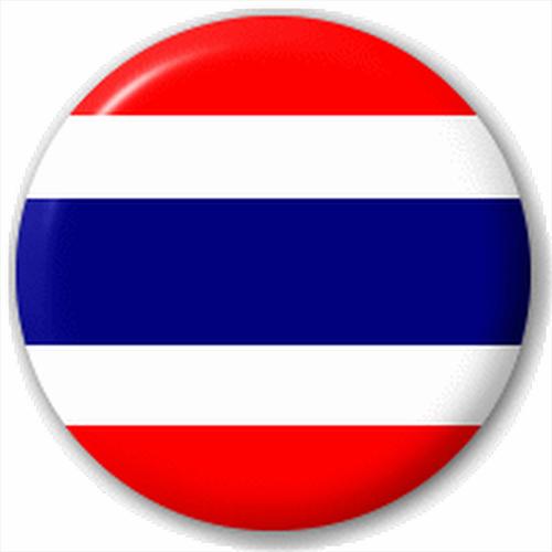 NEW LAPEL PIN BUTTON BADGE Thai Flag | eBay