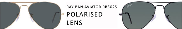 Aviator Polarised Lens