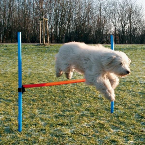 Dog Agility Adjustable Hurdle Jump Exercise Equipment ...