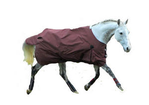 Chillton 1200d Lightweight Turnout Rug Preview