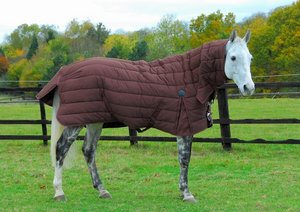 Chillton Heavy Weight Stable Rug Combo Brown or Navy Preview