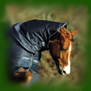 Amigo Turnout Hood Neck Cover Navy Small Preview