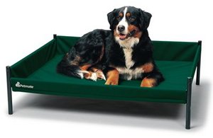 Durabed Elevated / Raised Dog / Pet Bed Preview